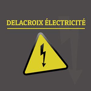 Cette image est le logo de l'entreprise Delacroix Electricité